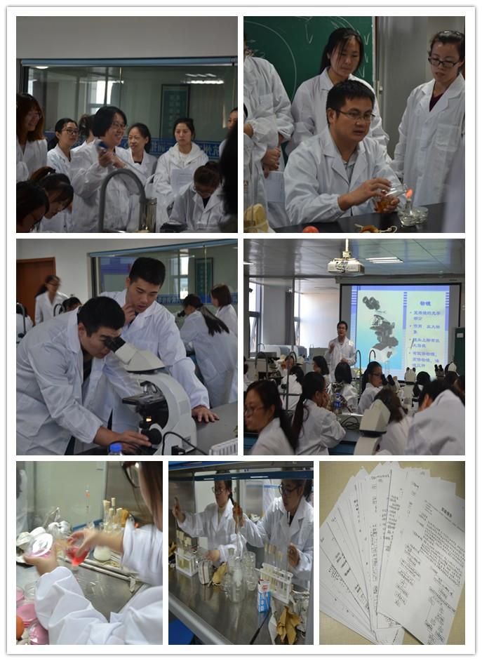 """协会成功举办""""全省食品与保健食品企业实验室风险管理与 微生物检验能力培训(基础)班"""""""